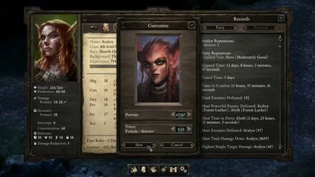Pillars of Eternity - Entwickler-Video zum Update 1.05