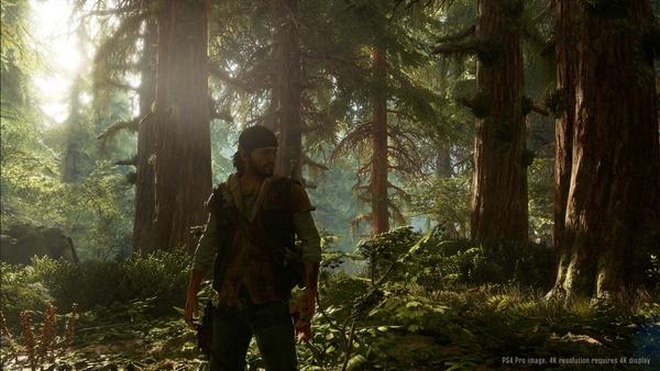 Screenshot zu Days Gone (PS4) - Screenshots