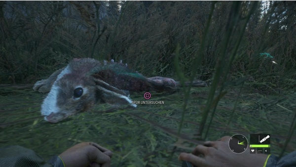 Screenshot zu The Hunter: Call of the Wild (PS4) - Screenshots