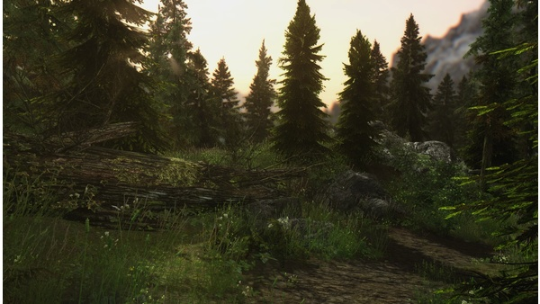 Skyrim Remastered - Special Edition mit Mod-Sammlung selbst