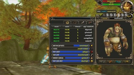 Runes of Magic - Tutorial-Video zum Pet-System