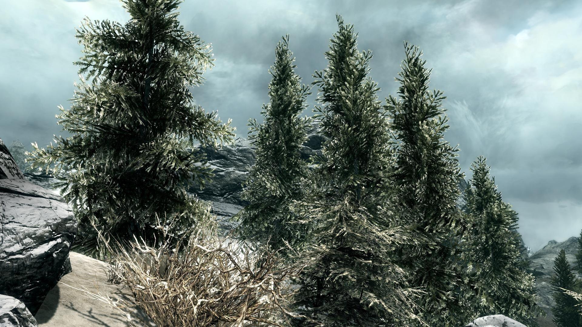 Next-Gen-Mods für Skyrim - So schön kann Skyrim auf dem PC sein ...