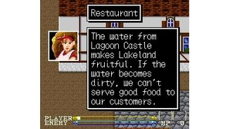 Talking to restaurant owner
