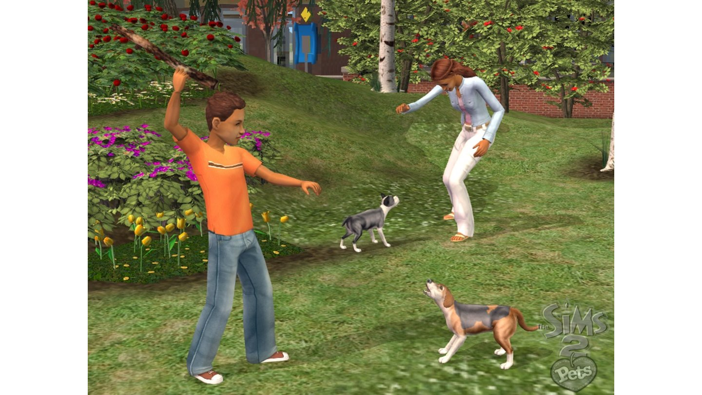 Sims 2 Haustiere 3